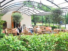 Bild2 - Restaurant kleine Linde