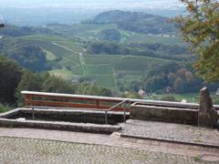 Bild3 - Spinnerhof