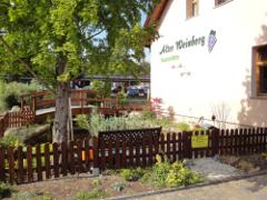 Bild1 - Alter Weinberg
