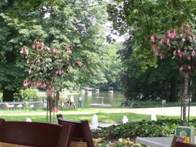 Bild3 - Am Tiergarten