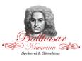 Logo - Balthasar Neumann
