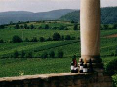 Bild1 - Weinstube Stauch