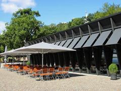 Bild1 - Am Niederwald